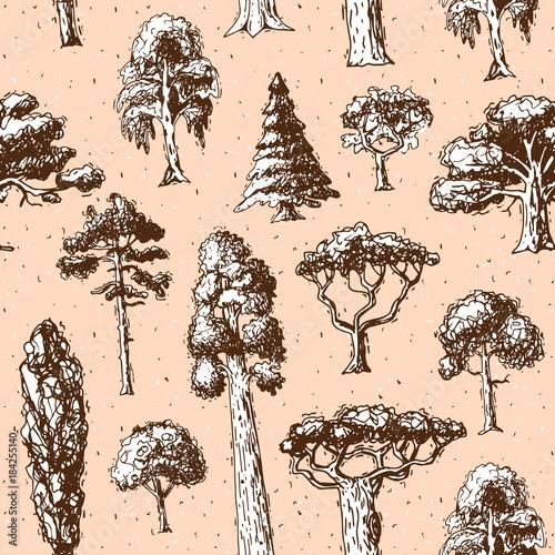 typy-drzew-wektor-zielony-treetops-sosny-zielony-zbior-brzozy-cedru-i-akacji-lub-realistyczny-ogrod-zieleni-z-palma-i-sakura-ilustracja