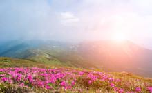Panoramic View Of Beautiful La...