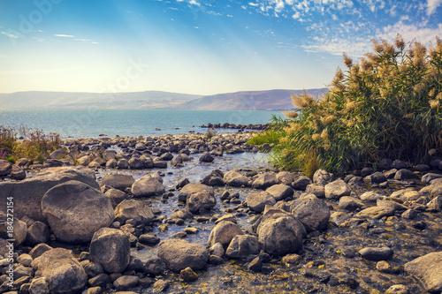 Obraz na płótnie The coast of the Sea of Galilee near Ein Eyov Waterfall in Tabgha, Israel