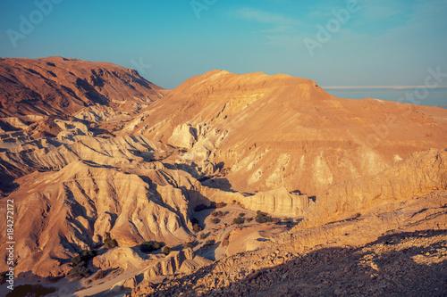 Foto op Aluminium Oranje eclat Desert Negev, Israel