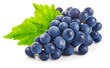 canvas print picture - Blue grapes with green leaf healthy eating, isolated on white