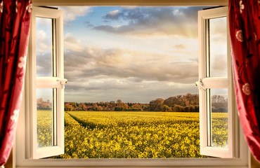 Window open with a view onto farm crops during sunset