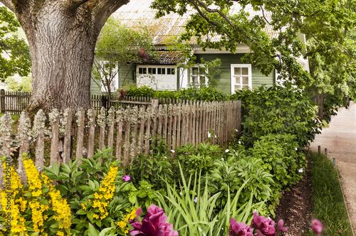 Alone Rural Cabin Retreat House Flower Tree Yard. Wallpaper Mural