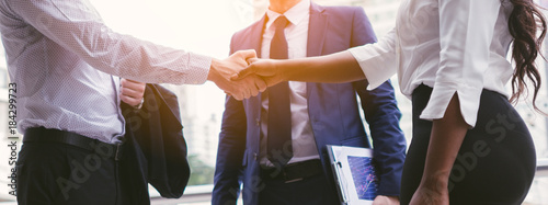 handshake of business People deal business Canvas Print