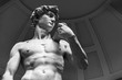 canvas print picture - David by Michelangelo, Florence