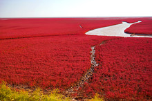The Red Beach Is Located In Pa...