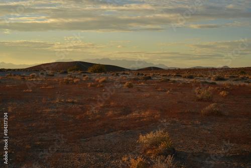 Foto op Plexiglas Chocoladebruin Mojave desert dawn landscape Pahrump, Nevada