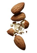 Group Of Broken Almonds
