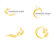 Agriculture Wheat Logo Templat...