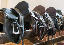 Rider Leather Saddles On Fence