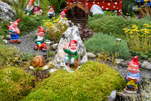 Garden Gnomes In A Garden Of A...