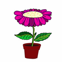 Cute  Pink Purple Flower And P...