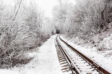 An Empty Railway Among The Bus...
