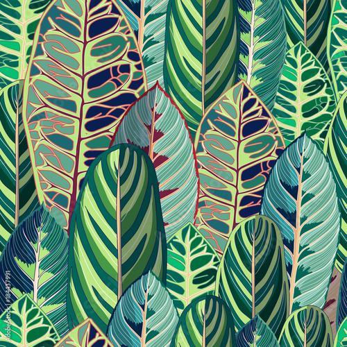 Foto  Tropical Jungle Leaf Vector Seamless Illustration