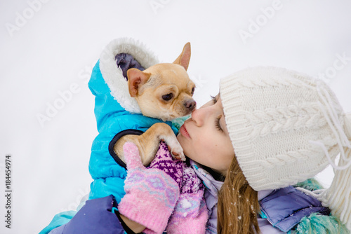 Stickers pour portes Panda Winter portrait of a girl with a small dog of the Chihuahua breed.