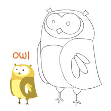 Kids Coloring Page - Owl