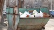 Trash bins on street