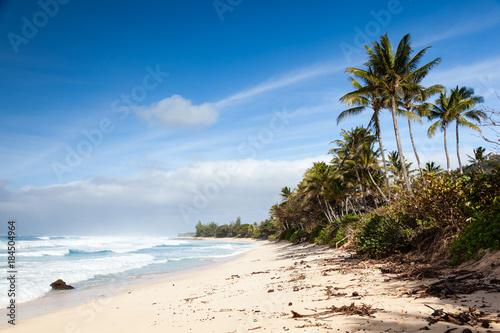 Foto op Canvas Cathedral Cove Banzai Pipeline Beach Landscape Hawaii