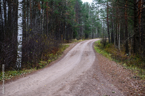Tuinposter Weg in bos empty forest road in the countryside in autumn. gravel surface