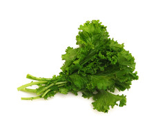 Fresh Curly Mustard Green Leaves