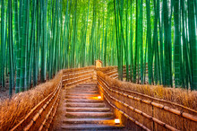 Bamboo Forest In Kyoto, Japan.