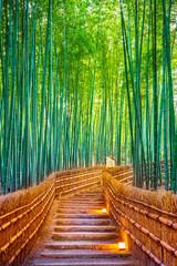 Panel Szklany Optyczne powiększenie Bamboo Forest in Kyoto, Japan.