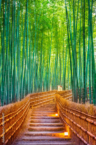 Poster Lieu connus d Asie Bamboo Forest in Kyoto, Japan.