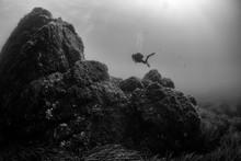 Woman Scuba Diving Over Rocks ...