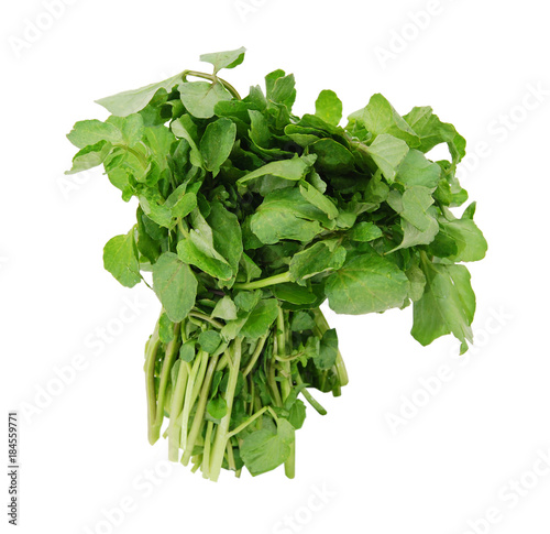 Photo A watercress bunch on white background