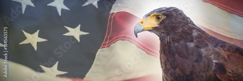 Composite image of close up of golden eagle