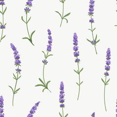 Fototapeta Lawenda Vector lavender seamless pattern. Beautiful and elegant lavender flowers background