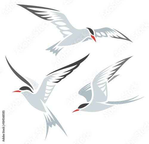 Stylized Birds - Terns Wall mural