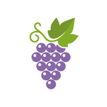Grapes Icon. Vector Illustrati...