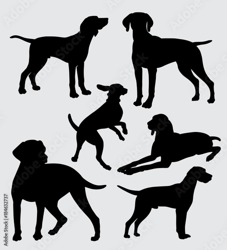 Leinwand Poster vizsla dog pet mammal animal silhouette good use for symbol, logo, web icon, mascot, sticker, sign, or any design you want