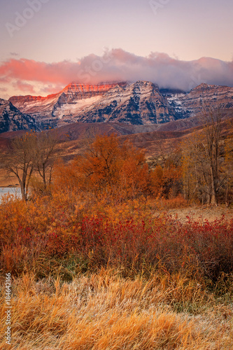 Foto op Aluminium Oranje eclat Autumn scene with Mount Timpanogos, Utah, USA.