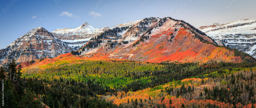 Fototapety, obrazy: Autumn sunrise in the Wasatch Mountains, Utah, USA.