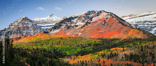 Wall Murals Blue sky Autumn sunrise in the Wasatch Mountains, Utah, USA.