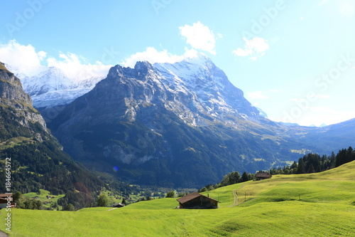 Tuinposter Alpen Swiss's nature