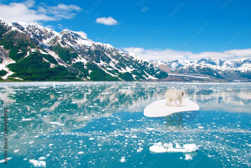 Eisbär treibt auf Eisscholle Klimawandel Erderwärmung