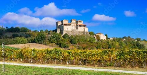 Foto op Plexiglas Kasteel Castles and vineyards of Italy - medieval Castello di Torrechiara, Parma province