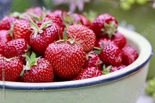 Fotografie, Obraz  Strawberry garden party. Floral arrangement