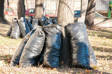 Black Garbage Bags Full Of Dea...