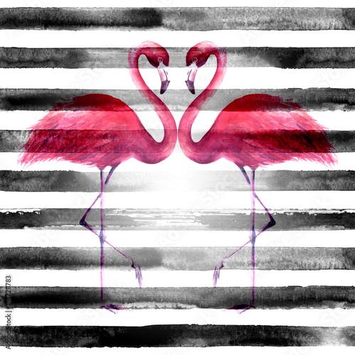 Photo sur Plexiglas Couple of flamingos on striped background