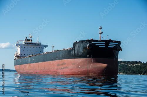 Bulker in Elliott Bay фототапет