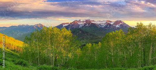 Foto op Canvas Beige Spring Timp landscape, Utah, USA.