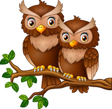 Cute Couple Owl On The Tree Br...
