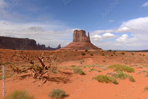 Spoed Foto op Canvas Koraal Desert Castles - Huge sandstone buttes, look like Castles of the Middle Ages, standing on desert floor of the Monument Valley.