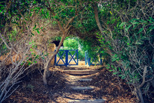 Entrance Through The Alley Of ...