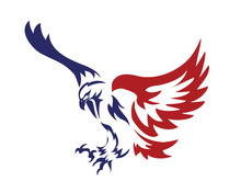 American Patriotic Eagle Special Force Logo