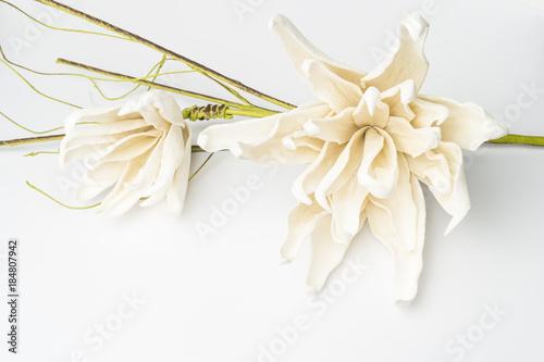 White gardenia blossom Wallpaper Mural